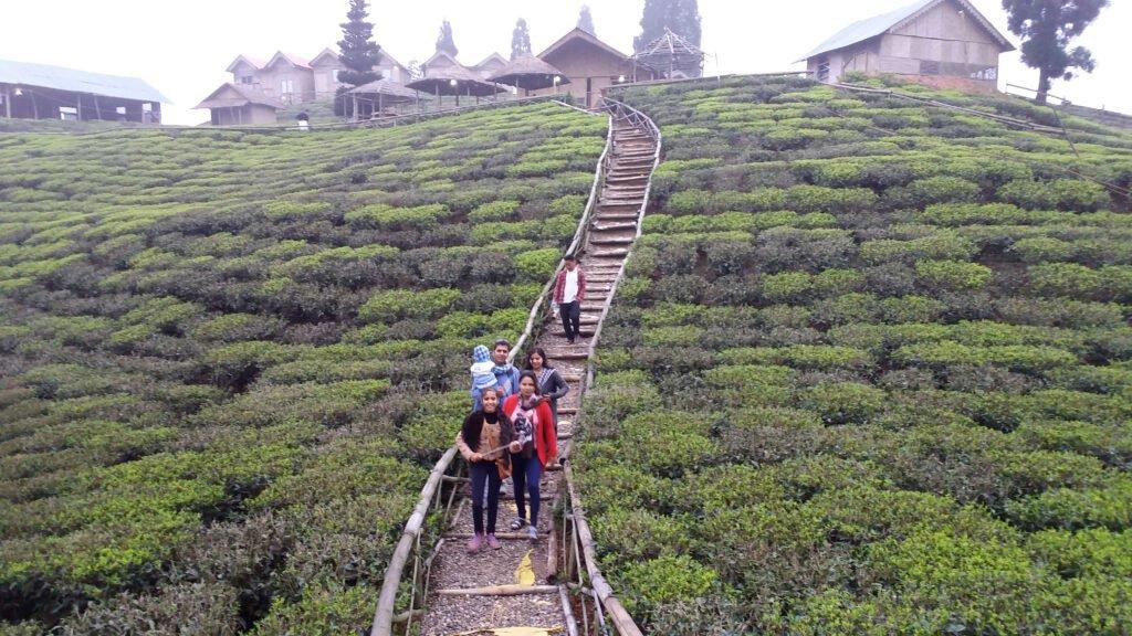 Shree Antu village