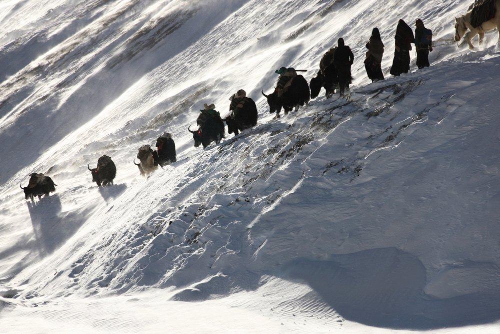 Dolpo trekking