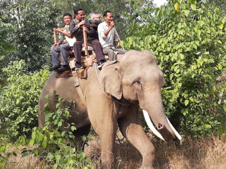 banke National park Jungle safari
