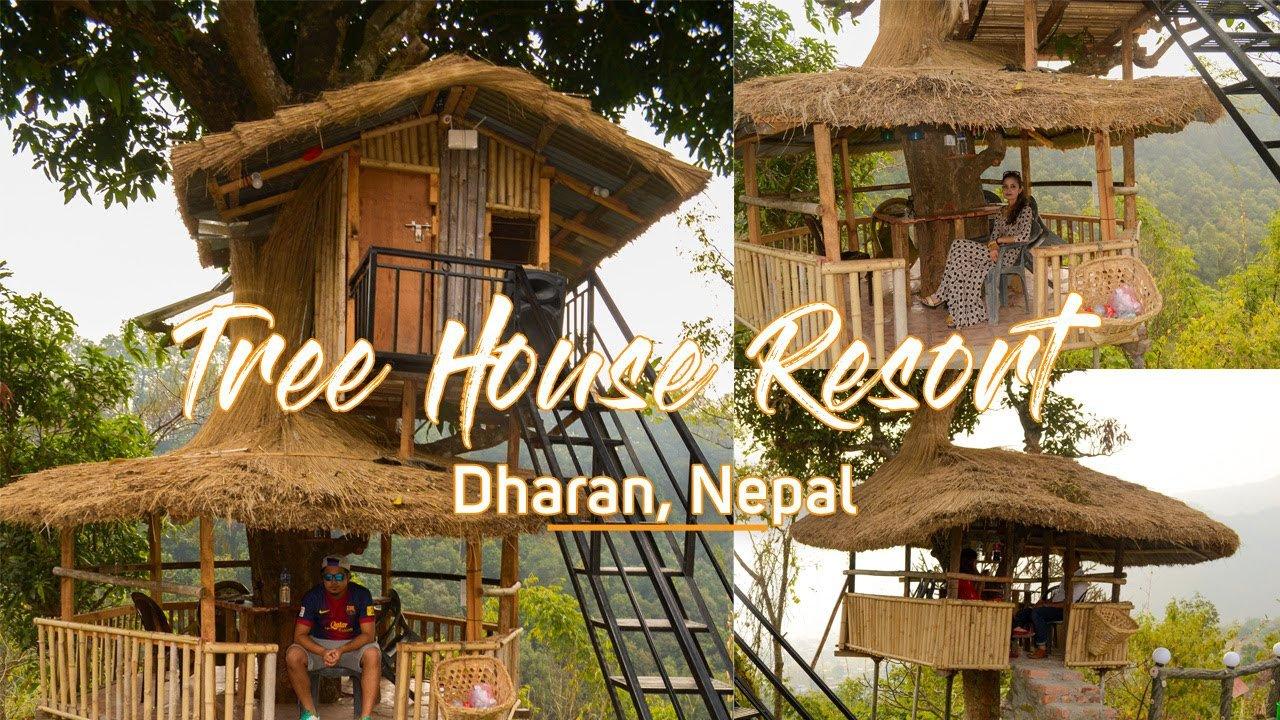 Tree house resort in Dharan