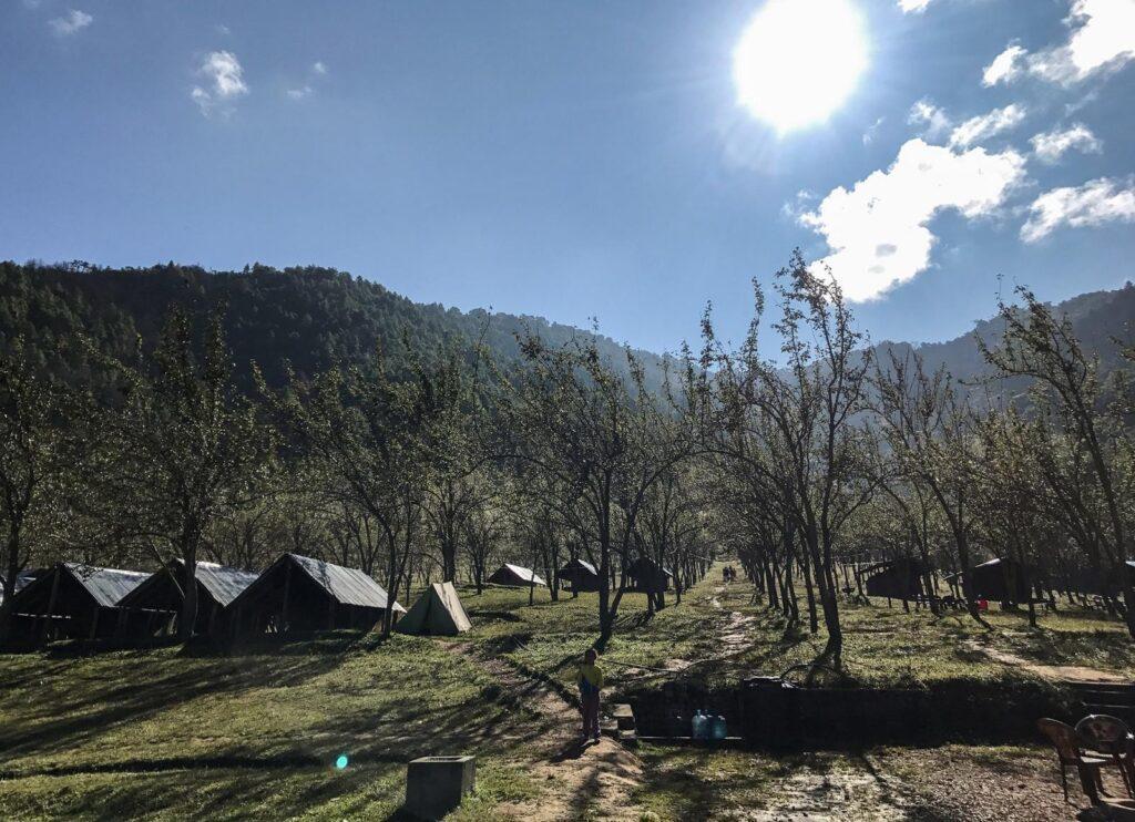 Pear farm in Chitlang