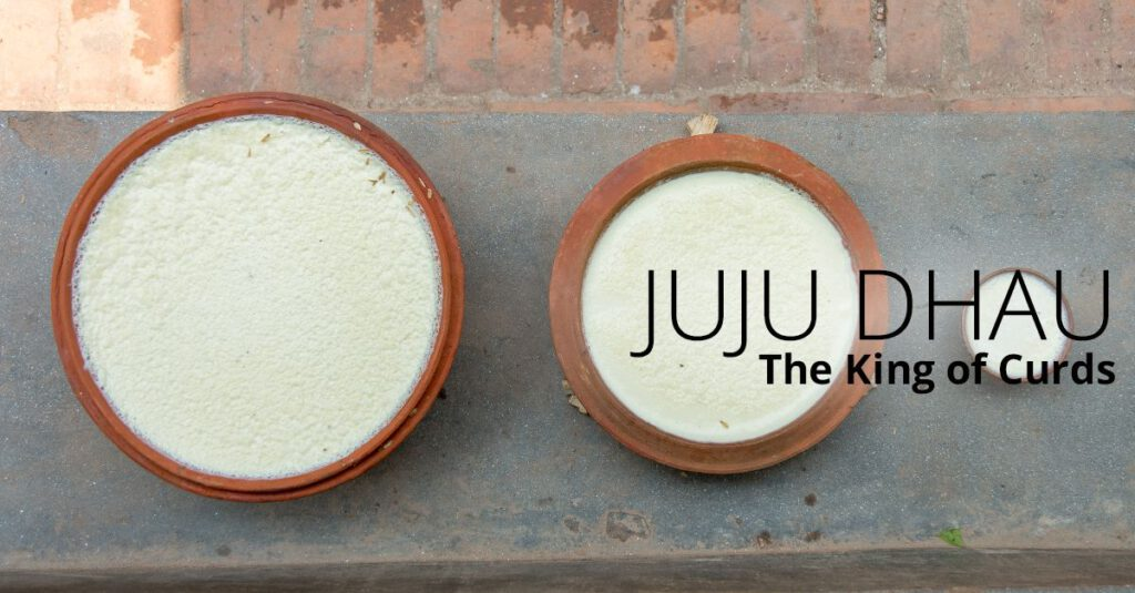famous yogurt ju ju dhau