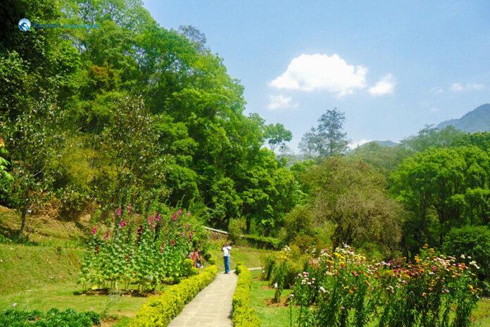 Godawari botanical Garden